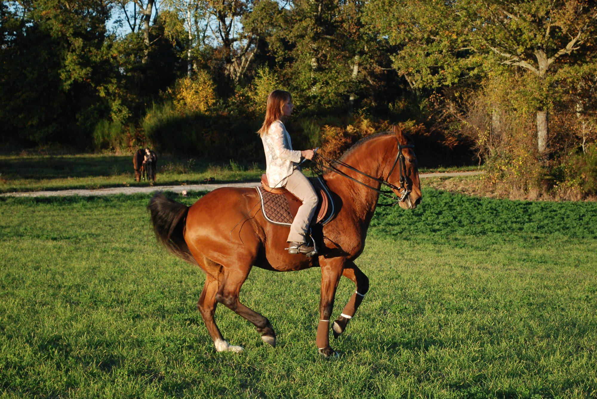 Equitation de Légèreté